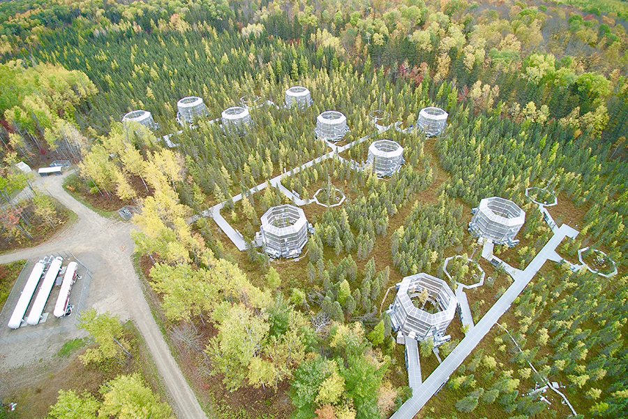 SPRUCE experimental site within the Marcell Experimental Forest in northern Minnesota. Courtesy of Oak Ridge National Laboratory/ U.S. Department of Energy.
