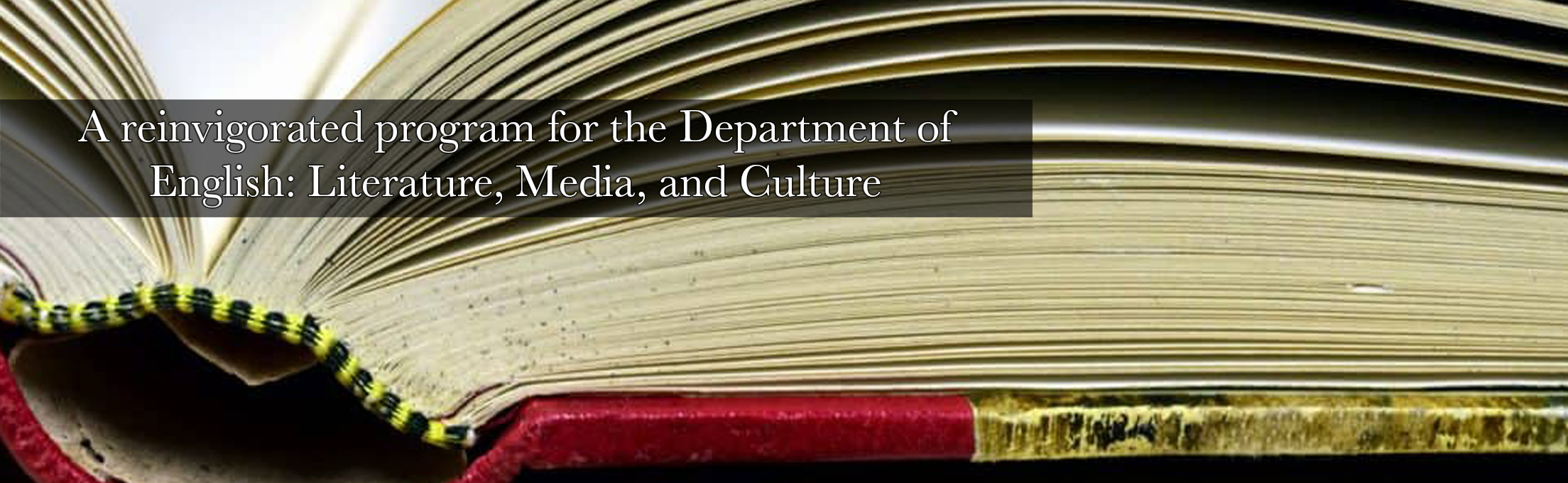 A reinvigorated program for the Department of English: Literature, Media, and Culture